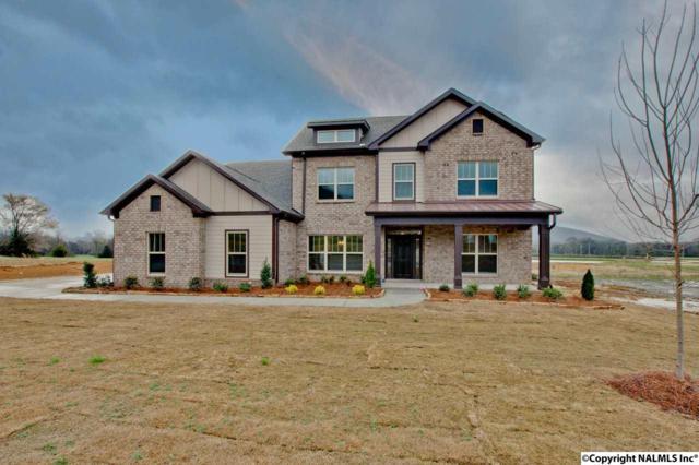 34 Abby Glen Way, Gurley, AL 35748 (MLS #1074659) :: Amanda Howard Real Estate™