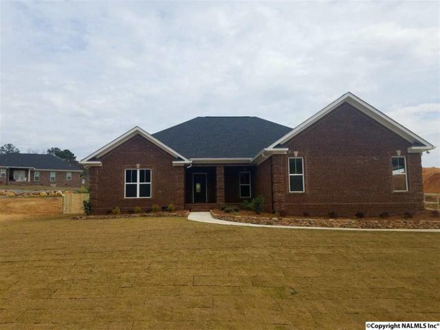 5781 Katherine Street, Southside, AL 35907 (MLS #1080171) :: Amanda Howard Real Estate™