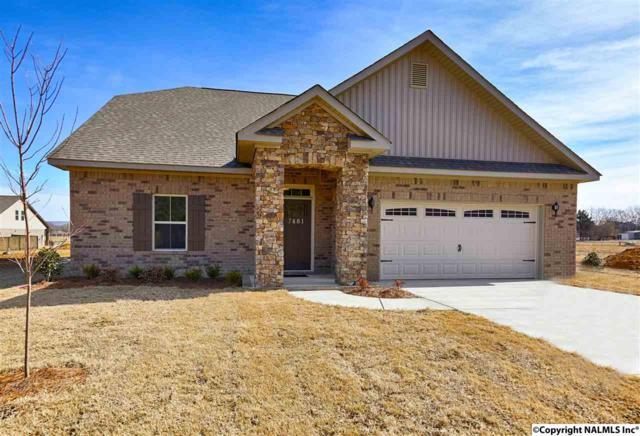 7481 Chaco Street, Owens Cross Roads, AL 35763 (MLS #1084023) :: Capstone Realty
