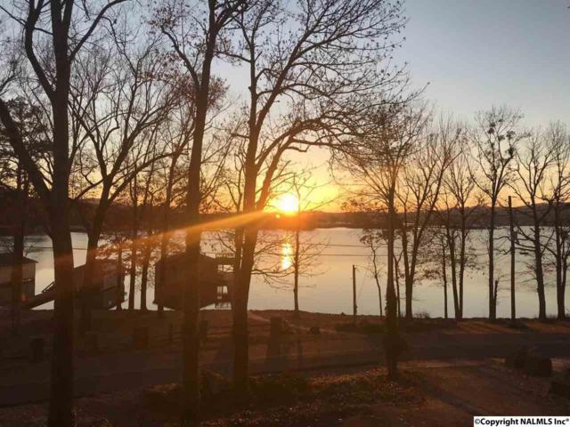 2405 Wyeth Drive, Guntersville, AL 35976 (MLS #1108371) :: Amanda Howard Sotheby's International Realty