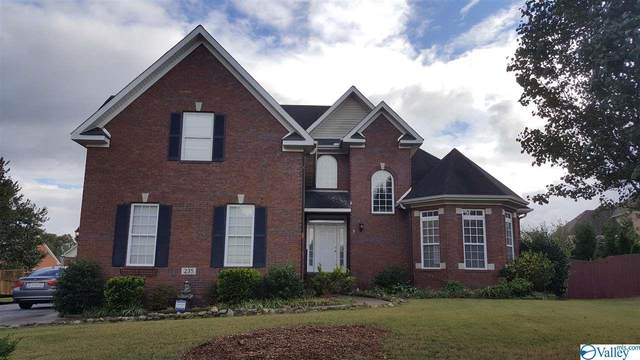 235 Jackies Terrace, Madison, AL 35758 (MLS #1154567) :: The Pugh Group RE/MAX Alliance