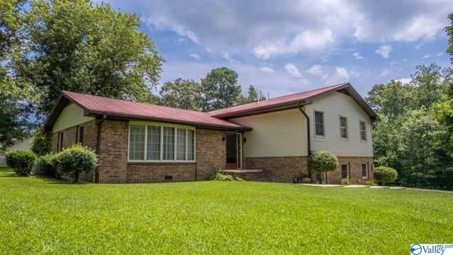 144 Oak Avenue, Rainsville, AL 35986 (MLS #1788075) :: Green Real Estate