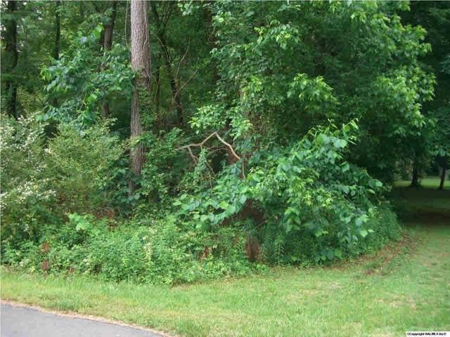 20 Hood Avenue, Scottsboro, AL 35769 (MLS #425433) :: Green Real Estate
