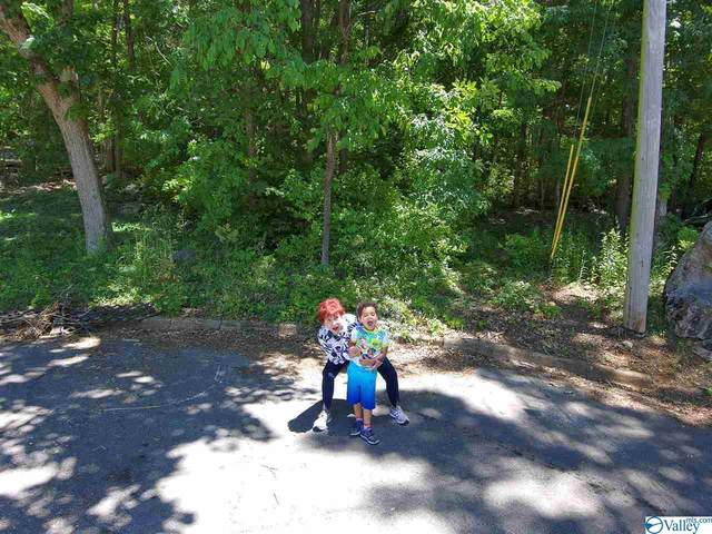 0 SE Shades Crest Road, Huntsville, AL 35801 (MLS #1781487) :: Green Real Estate