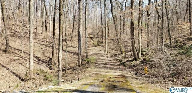 Northwoods Trail, Gadsden, AL 35901 (MLS #972788) :: MarMac Real Estate