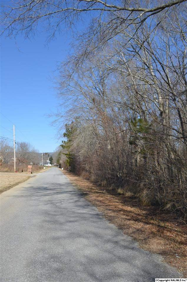 Lot 11 Riverchase Drive, Southside, AL 35907 (MLS #1013289) :: RE/MAX Unlimited