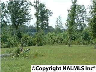 3 Hunter Trail, Trenton, GA 30752 (MLS #1019768) :: Amanda Howard Real Estate™