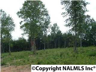 4 Hunters Trail, Trenton, GA 30752 (MLS #1020093) :: Amanda Howard Real Estate™