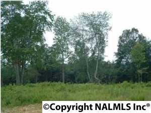 5 Hunters Trail, Trenton, GA 30752 (MLS #1020097) :: Amanda Howard Real Estate™