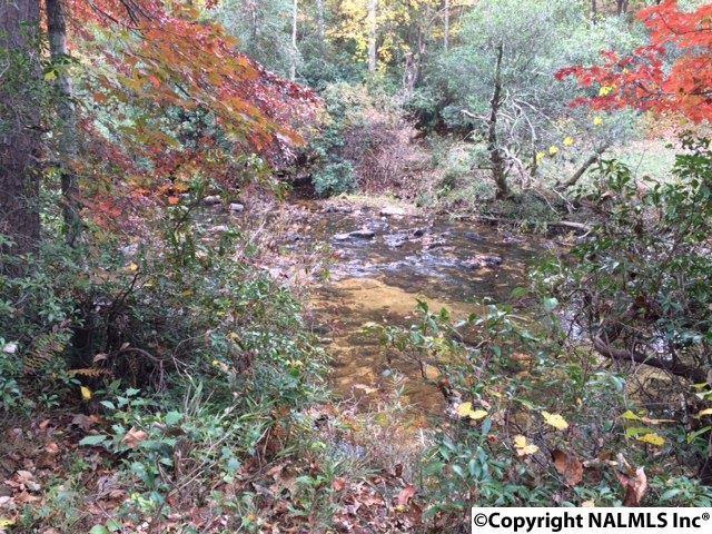 4546 County Road 648, Mentone, AL 35984 (MLS #1031763) :: Amanda Howard Real Estate™