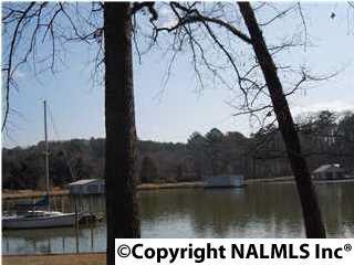 12 Morrow Drive, Guntersville, AL 35976 (MLS #1037458) :: Amanda Howard Real Estate™