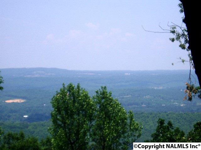 20228 County Road 89, Mentone, AL 35984 (MLS #1044809) :: RE/MAX Alliance