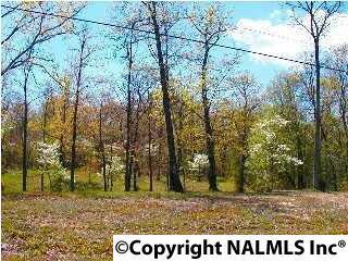 122 & 124 Hillsdale Drive, Gurley, AL 35748 (MLS #1050431) :: RE/MAX Alliance