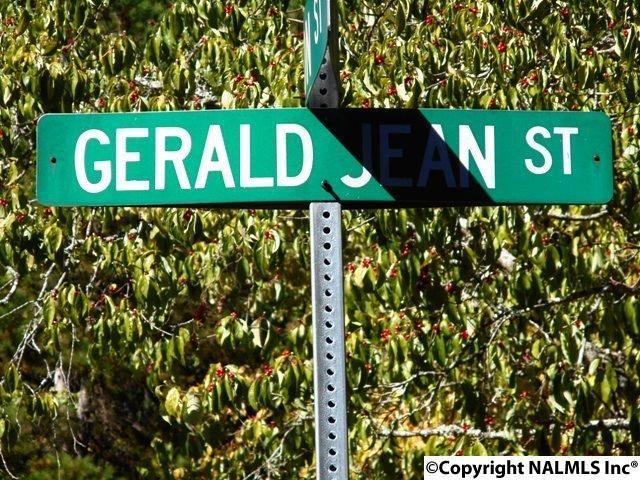 Gerald Jean Street, Gadsden, AL 35901 (MLS #1055015) :: Amanda Howard Sotheby's International Realty