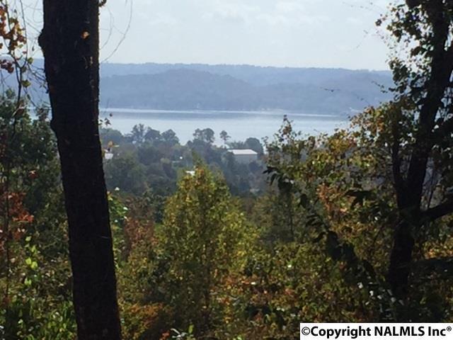 18 Spindletop Drive, Guntersville, AL 35976 (MLS #1055872) :: Amanda Howard Real Estate™