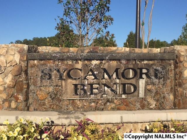 117 NW Sycamore Bend Drive, Huntsville, AL 35806 (MLS #1056573) :: Amanda Howard Real Estate™