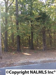 Shagbark Trail, Somerville, AL 35670 (MLS #1056681) :: RE/MAX Alliance