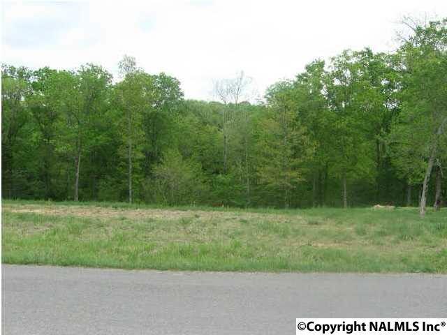 371 Criscoe Road, Union Grove, AL 35175 (MLS #1060975) :: Amanda Howard Real Estate™