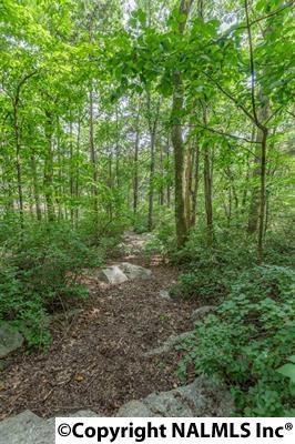 0 Gaboury Lane, Huntsville, AL 35811 (MLS #1061578) :: Amanda Howard Real Estate™