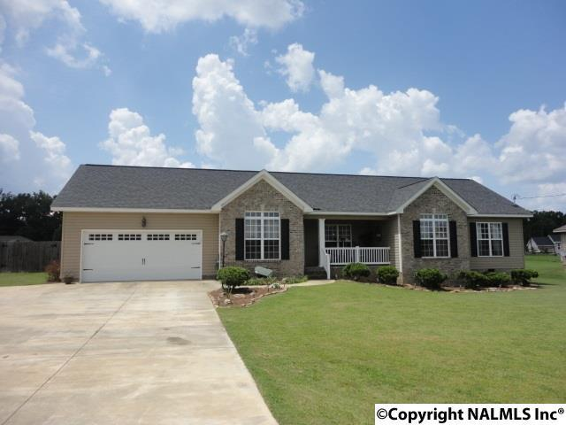 4164 Blake Drive, Southside, AL 35907 (MLS #1061596) :: Legend Realty