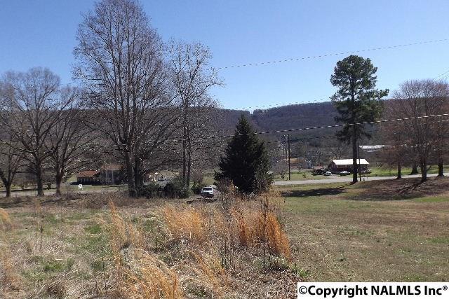 7923 County Road 137, Valley Head, AL 35989 (MLS #1063221) :: Amanda Howard Real Estate™