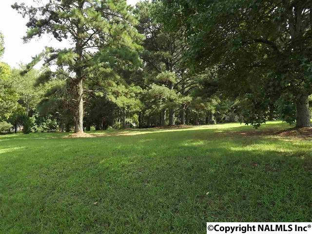 0 Linwood Avenue, Albertville, AL 35950 (MLS #1067416) :: Amanda Howard Real Estate™