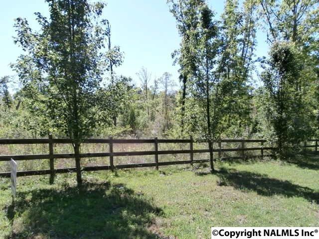 Lot 13 Road 1970, Mentone, AL 35984 (MLS #1068304) :: RE/MAX Alliance