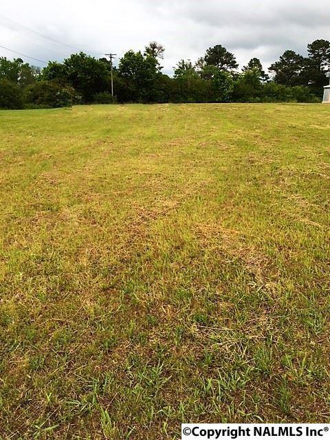 Alabama Highway 75, Geraldine, AL 35974 (MLS #1069877) :: Amanda Howard Real Estate™