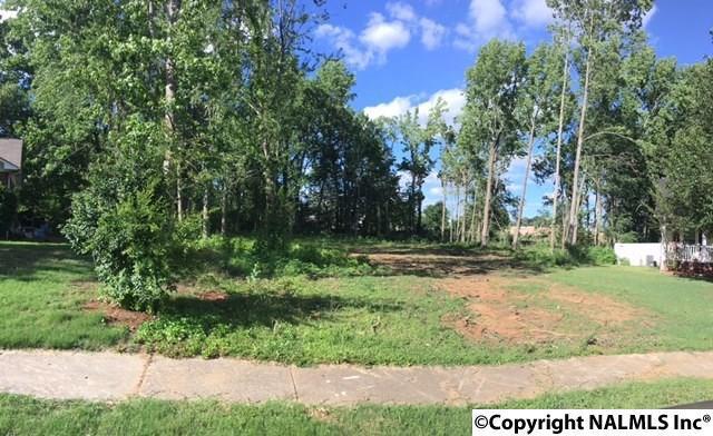 199 Sherry Lynn Place, Harvest, AL 35749 (MLS #1070714) :: RE/MAX Alliance