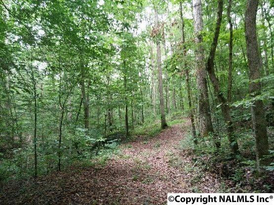 2462 Lawrence Cove Road, Huntsville, AL 35621 (MLS #1070918) :: Intero Real Estate Services Huntsville