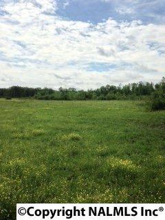 1021 3 MILE LANE, Tuscumbia, AL 35674 (MLS #1072471) :: Amanda Howard Real Estate