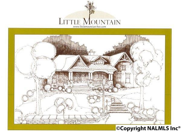 4641 Saddle Ridge Drive, Huntsville, AL 35763 (MLS #1074258) :: Amanda Howard Real Estate™
