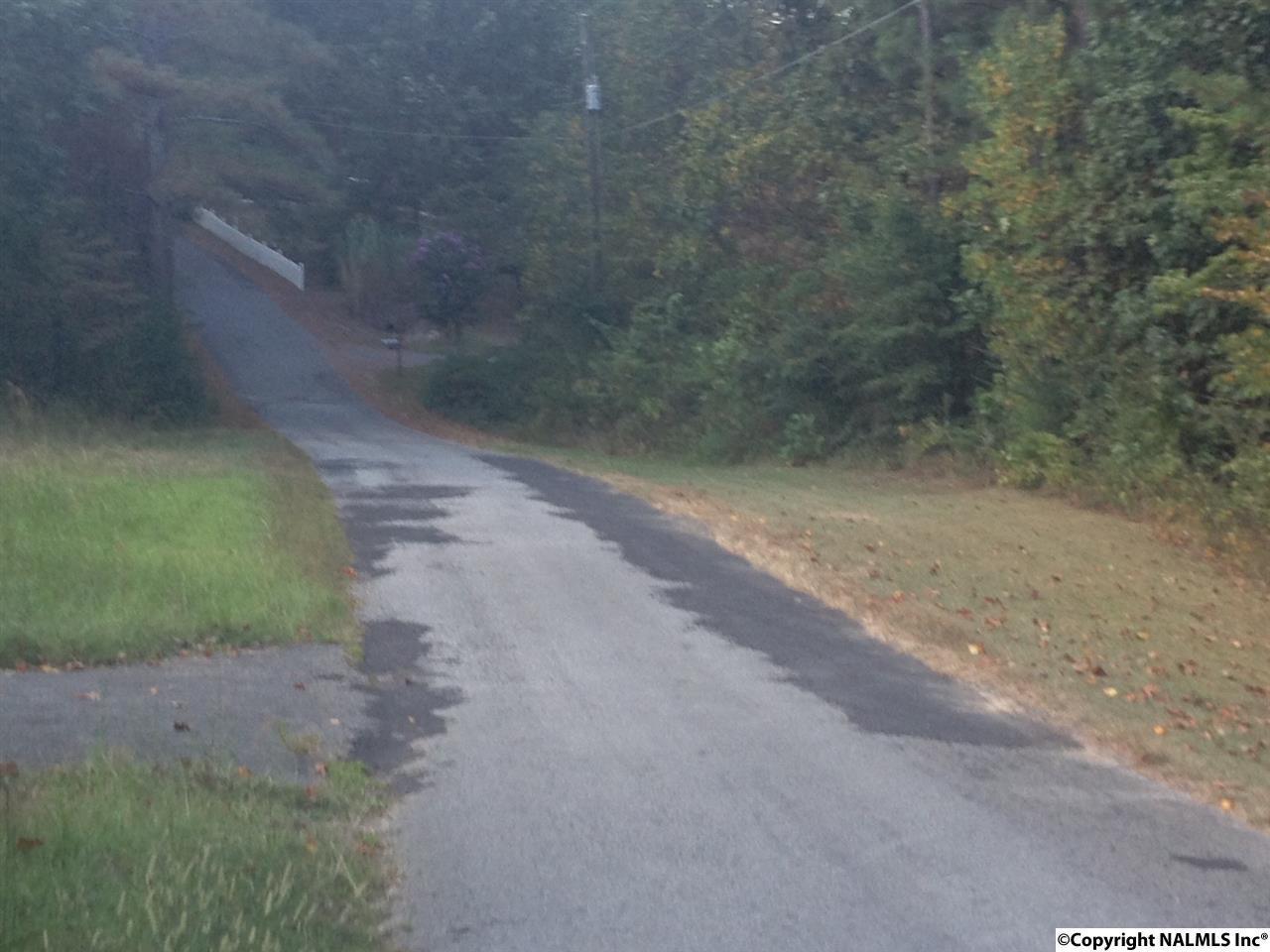 383 Smoke Rise Trail - Photo 1