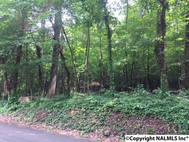 00 Wyeth Drive, Guntersville, AL 35976 (MLS #1075822) :: Amanda Howard Real Estate™