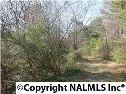 0 Plantation Drive, Albertville, AL 35951 (MLS #1076352) :: Legend Realty
