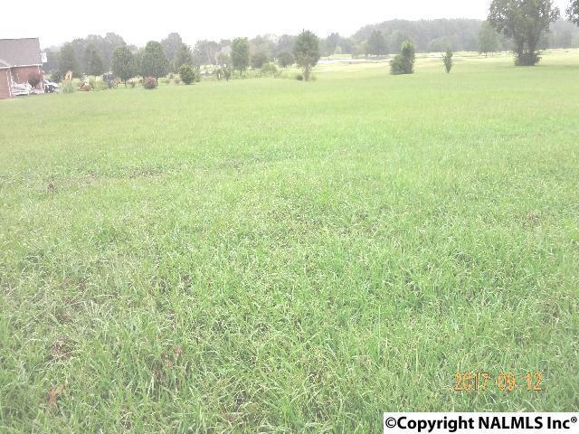 Plantation Pointe Road, Scottsboro, AL 35768 (MLS #1078195) :: Intero Real Estate Services Huntsville