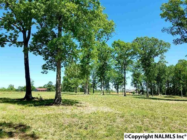 Pine Ridge Road, Union Grove, AL 35175 (MLS #1078261) :: Amanda Howard Real Estate™