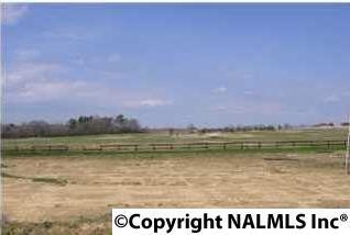 685 Cochran Avenue, Albertville, AL 35951 (MLS #1078304) :: RE/MAX Alliance