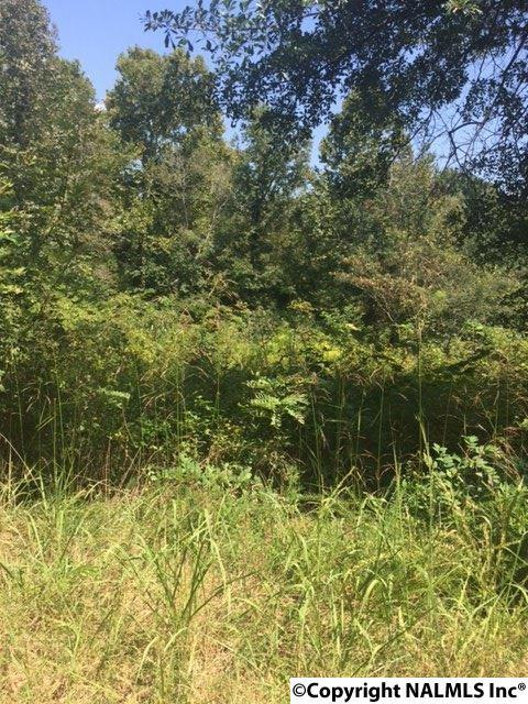 0 Scenic Circle, Hollywood, AL 35771 (MLS #1078542) :: RE/MAX Alliance