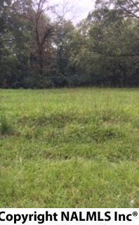 5519 Indian Hills, Decatur, AL 35603 (MLS #1078764) :: Capstone Realty