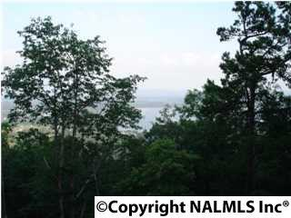 LOT 7 County Road 70, Leesburg, AL 35983 (MLS #1080323) :: Amanda Howard Sotheby's International Realty