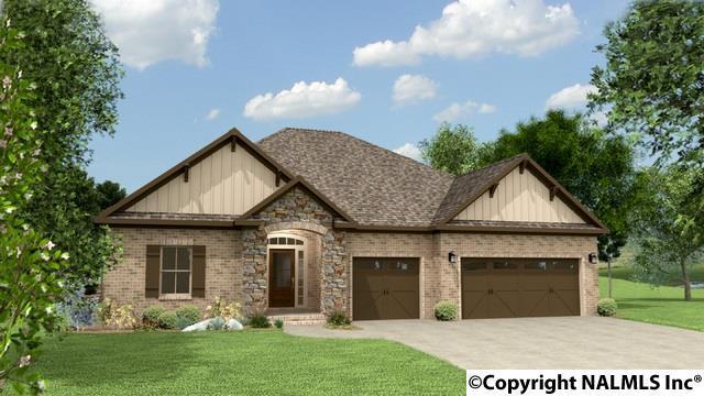 207 Rowan Street, Meridianville, AL 35759 (MLS #1080515) :: Intero Real Estate Services Huntsville