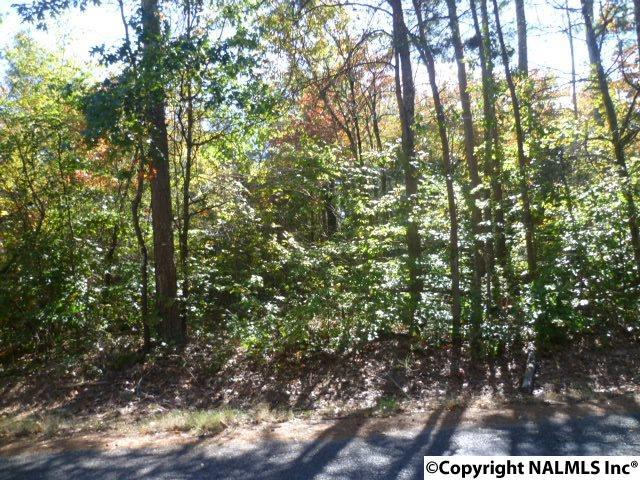 Lot 5 Long Hollow Circle, Fort Payne, AL 35968 (MLS #1082036) :: RE/MAX Alliance