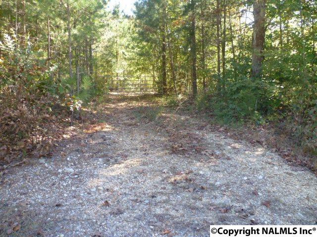 Lot 7 County Road 88, Fort Payne, AL 35968 (MLS #1082038) :: RE/MAX Alliance
