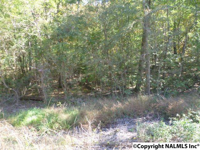 Lot 10 County Road 88, Fort Payne, AL 35968 (MLS #1082041) :: RE/MAX Alliance