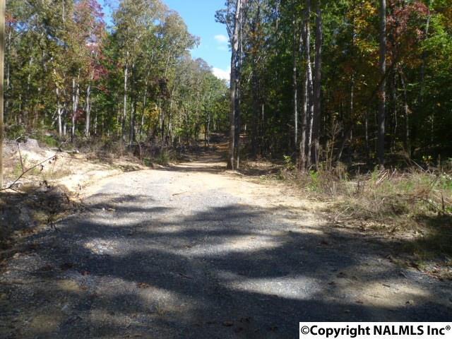 Lot 13 County Road 596, Fort Payne, AL 35968 (MLS #1082044) :: Intero Real Estate Services Huntsville