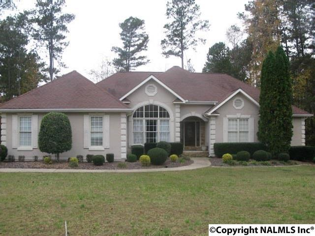 14 Silver Lakes Blvd, Glencoe, AL 35905 (MLS #1082276) :: RE/MAX Distinctive | Lowrey Team