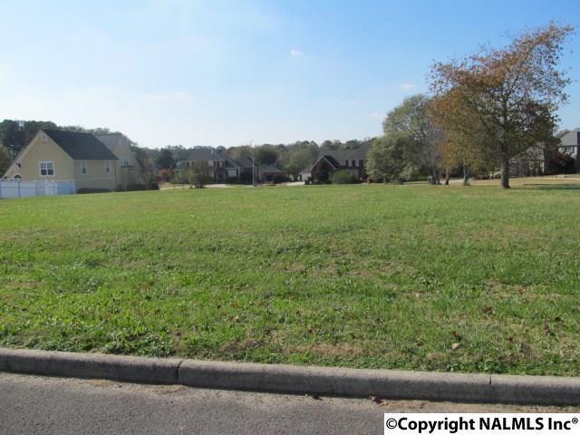 0 Brook Haven Drive, Albertville, AL 35951 (MLS #1082349) :: Amanda Howard Real Estate™