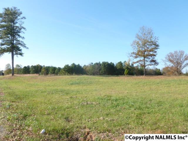 Whitlow Road, Trinity, AL 35673 (MLS #1082588) :: Capstone Realty