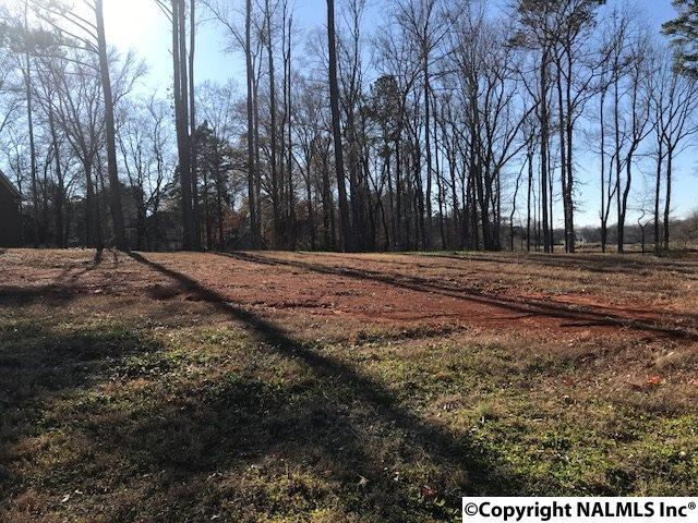 141 Keystone Drive, Meridianville, AL 35759 (MLS #1083671) :: Amanda Howard Real Estate™